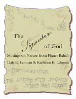 The Signature Of God cover
